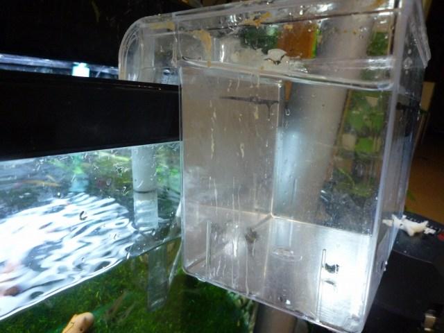 サテライトというもので、産卵箱や稚魚の育成などのはか水合わせにも使えます。